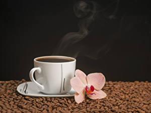 Fotos Kaffee Orchideen Schwarzer Hintergrund Tasse Getreide Dampf