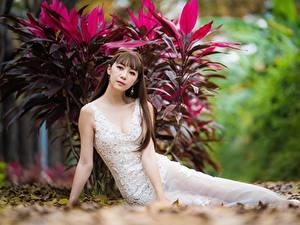 Hintergrundbilder Asiatische Unscharfer Hintergrund Blick Kleid Braunhaarige Pose Mädchens