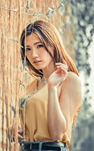 Fotos Asiatische Bokeh Braune Haare Blick Hand junge Frauen