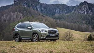 Hintergrundbilder Berg Subaru Metallisch Softroader Forester, 2019 auto