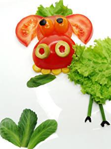 Bilder Gemüse Kuh Tomate Kreativ Weißer hintergrund Design Lebensmittel