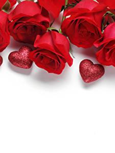 Papel de Parede Desktop Rosa Dia dos Namorados Vermelho Coração Fundo branco Cartão do molde