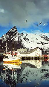 Hintergrundbilder Norwegen Lofoten Gebirge Haus Seebrücke Möwen Motorboot Wolke Reine Städte