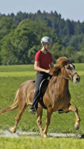 Fotos Pferdesport Pferde Helm Sport Mädchens