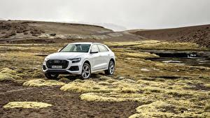 Bilder Audi Weiß Metallisch 2018 Q8 55 TFSI quattro Worldwide Autos