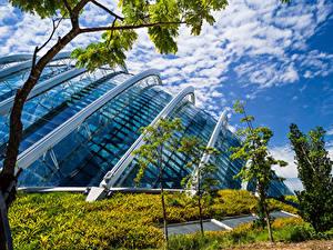 Bilder Singapur Garten Haus Design Bäume Gardens by the Bay Natur