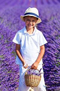 Bilder Acker Lavendel Jungen Lächeln Weidenkorb Der Hut Kinder