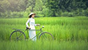 Fotos Asiatische Gras Fahrrad Brünette Der Hut Mädchens