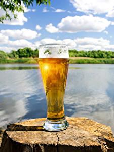Hintergrundbilder Bier Baumstumpf Trinkglas Schaum Lebensmittel