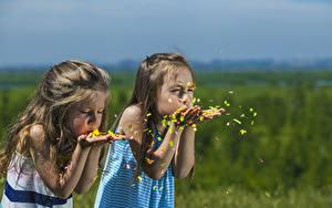 Bilder Kleine Mädchen 2 Hand kind