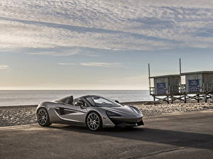 Fotos McLaren Grau Roadster 2018 570S Spider Autos