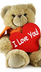Bilder Valentinstag Teddybär Liebe Weißer hintergrund Herz Englisches