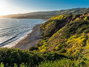 Hintergrundbilder USA Küste Ozean Kalifornien Laubmoose Felsen