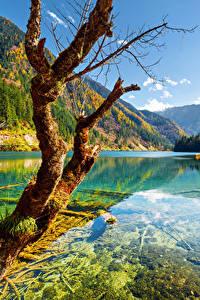 Sfondi desktop Valle del Jiuzhaigou Cina Parco Autunno Fiume Montagne Paesaggio Tronco di albero Alberi Natura