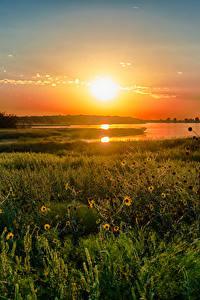 Hintergrundbilder See Sonnenaufgänge und Sonnenuntergänge Vereinigte Staaten Texas Gras Natur