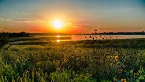 Hintergrundbilder See Sonnenaufgänge und Sonnenuntergänge USA Texas Gras Natur