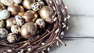 Hintergrundbilder Eier Gold Farbe Nest