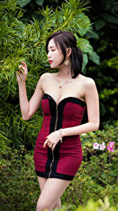 Fotos Asiaten Posiert Kleid Hand junge frau