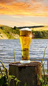 Hintergrundbilder Bier Baumstumpf Trinkglas Schaum