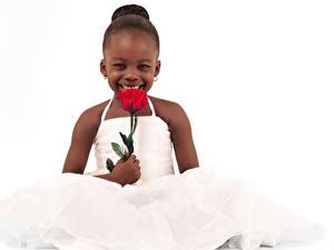 Wallpaper Roses White background Little girls Joyful Frock Negroid Children