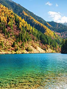 Bilder Jiuzhaigou park China Park See Herbst Gebirge Wälder Landschaftsfotografie