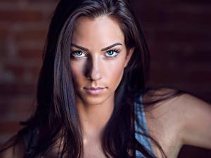 Hintergrundbilder Starren Model Gesicht Haar Brünette Schön Janna Breslin junge Frauen