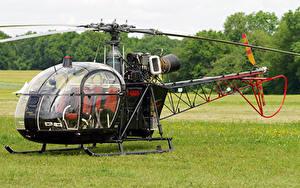 Hintergrundbilder Hubschrauber Gras Sud SA-313B Alouette II