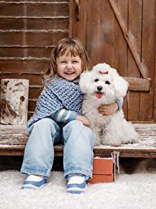 Bilder Winter Hunde Kleine Mädchen Lächeln Bologneser Sitzend Lachen Kinder
