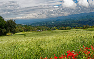 Fotos Japan Landschaftsfotografie Felder Hügel Ähre Nagano Natur