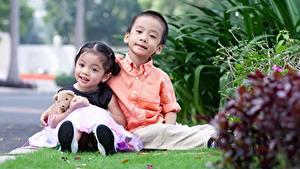 Hintergrundbilder Asiatische Knuddelbär 2 Gras Jungen Kleine Mädchen Sitzend Kinder