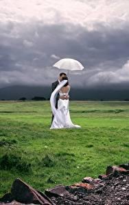 Hintergrundbilder Paare in der Liebe Grünland Ehe 2 Bräutigam Bräute Gras Regenschirm Umarmen Natur