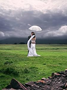 Hintergrundbilder Paare in der Liebe Grünland Ehe 2 Bräutigam Bräute Gras Regenschirm Umarmen