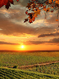 Fotos Italien Toskana Sonnenaufgänge und Sonnenuntergänge Felder Himmel Herbst Wolke Sonne
