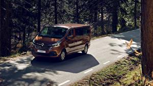 Fotos Renault Metallisch Braun 2019 Trafic Minibus LWB Worldwide Autos