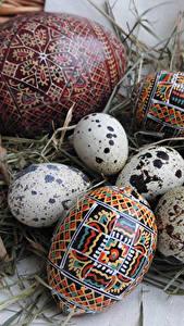 Fotos Feiertage Ostern Ei Stroh