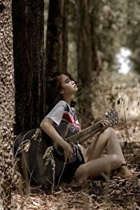Fotos Asiatische Sitzend Gitarre Bäume Erholung Mädchens