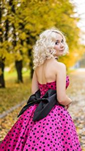 Bilder Herbst Bokeh Blondine Starren Schleife