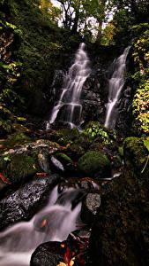Pictures Japan Waterfalls Stones Rock Moss Leaf Fudotaki Falls Katsuyama Nature