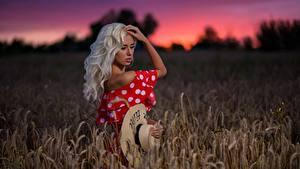 Bilder Felder Blond Mädchen Der Hut Model Margo Dmitry Medved junge Frauen