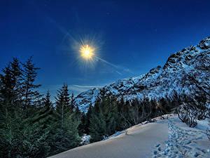 Hintergrundbilder Norwegen Lofoten Winter Gebirge Schnee Fichten Sonne
