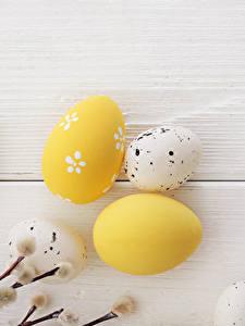 Fotos Feiertage Ostern Bretter Ei Ast