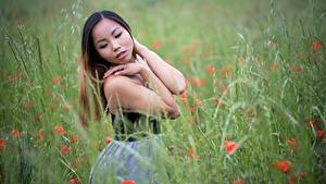 Bilder Asiaten Gras Unscharfer Hintergrund Braune Haare Pose Hand
