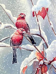 Bilder Vögel Gezeichnet Schnee Ast Tiere