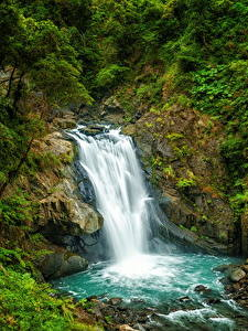 Nature 240x320 wallpaper (796 images) pictures download