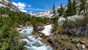 Bilder Flusse Park Gebirge Steine USA Grand Teton National Park, Wyoming Natur