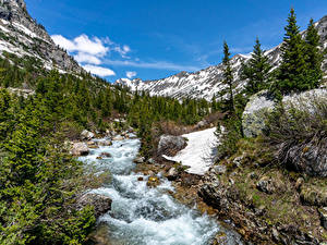 Bilder Flusse Park Gebirge Steine USA Grand Teton National Park, Wyoming Natur