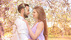 Bilder Liebe Mann Blühende Bäume Zwei Dunkelbraun Lächeln
