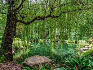 Bilder USA Park Teich Steine Design Bäume Gibbs Gardens Natur