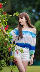 Hintergrundbilder Asiatische Braunhaarige Shorts Mädchens