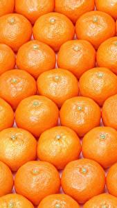 Fotos Textur Zitrusfrüchte Mandarine Viel